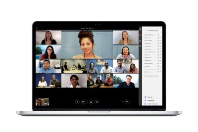 Lifesize 13 Way Video Conferencing Call